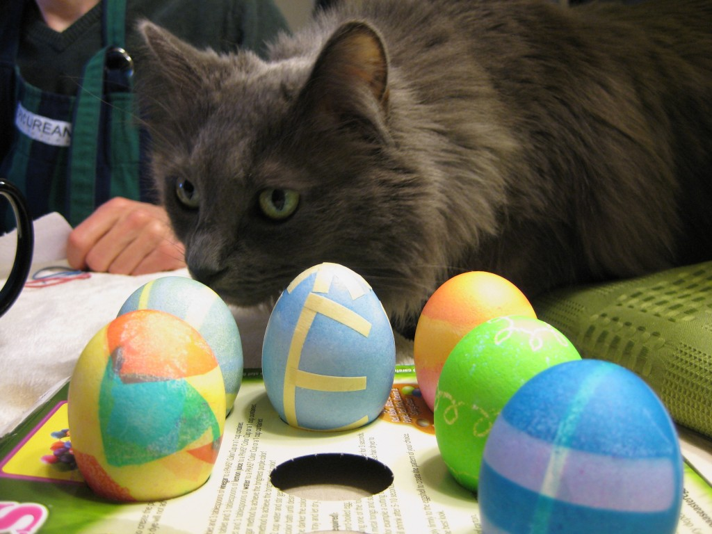 Luna with Easter Eggs