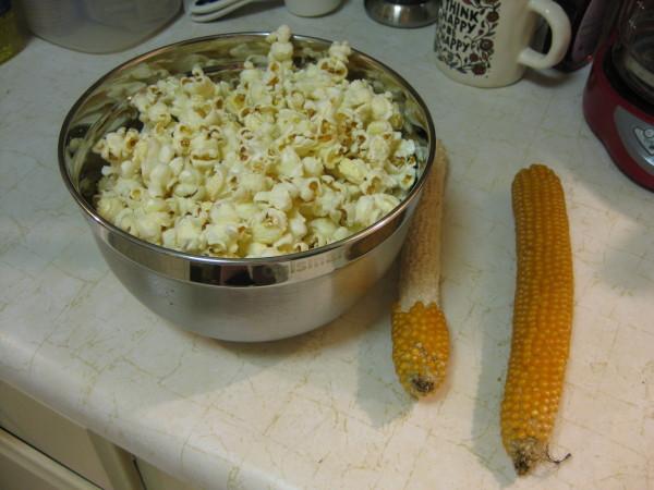 CSA Popcorn