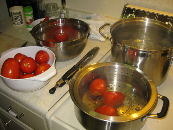 The Canning Process